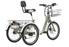 Tricycle Electrique E-130 Plomb Tricycle